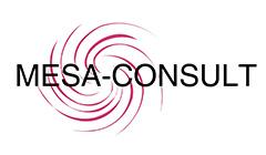 Mesa Consult